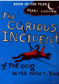 curious book cover haddon